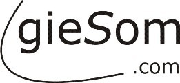 gieSom.com - - Sport erleben -